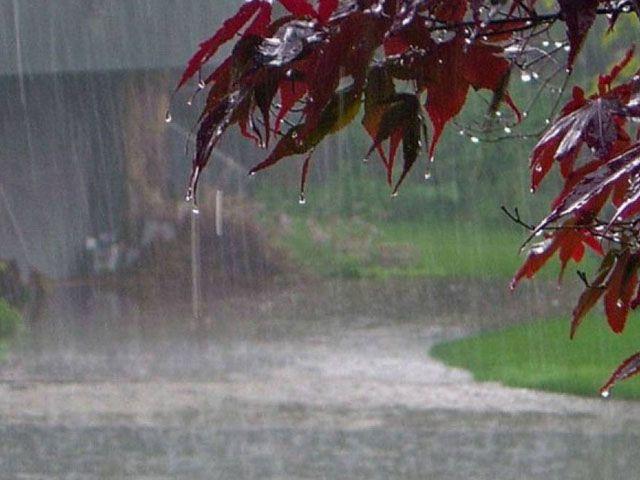 Rain forecast on Sunday: PMD